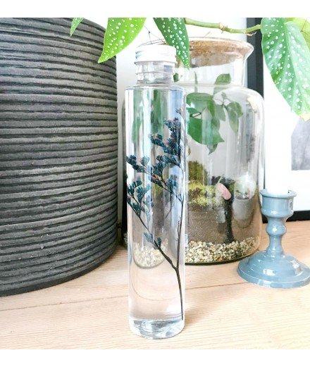 Plante immergée en fiole 200 mL - Limonium