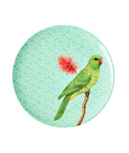 Grande assiette en mélamine - Perroquet