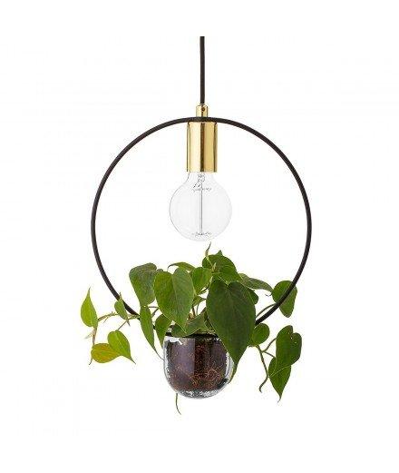 Suspension luminaire ronde avec plante
