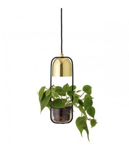 Suspension luminaire avec plante