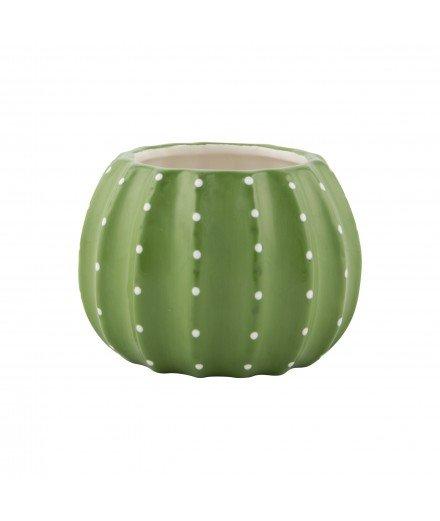 Cache-pot Cactus